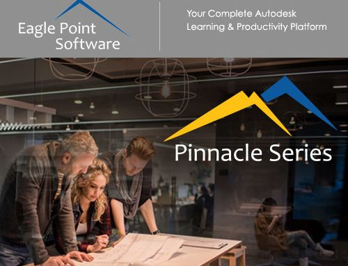 Eagle Point partners with Modena Consulting as African Distributor for the Pinnacle Series